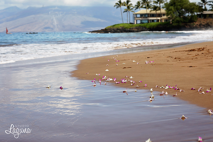 mauiwedding0024